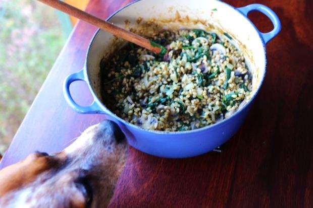 barley risotto2b