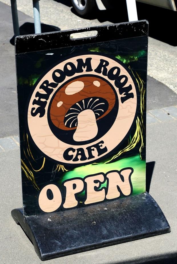 shroomroom1